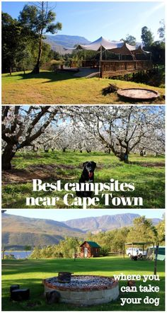 Where to go camping with a dog in Western Cape? Here are best pet-friendly campsites in the area. map of the campsites, rules, phone for booking, facilities and prices. Camping Spots, Go Camping, Camping Hacks, Luxury Camping, Camping Ideas, Family Camping, Family Travel, Hotel Istanbul, Hotel Paris
