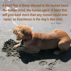 A Dog's Elan Vital