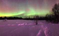 Northern lights reflected in snow