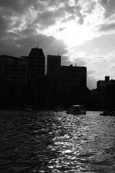 のんくり日和: 夕暮れボート