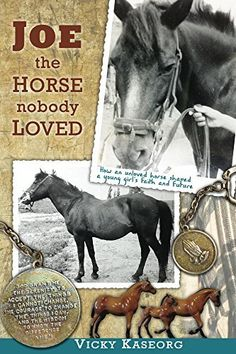 Joe -- the Horse Nobody Loved by Vicky Kaseorg, http://www.amazon.com/dp/B00VIM9Y2O/ref=cm_sw_r_pi_dp_sB2jvb1GT2MT6