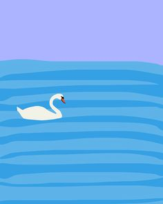 Fine Art Print.  Swan in the Ocean.  Aug 16, 2012.. $80.00, via Etsy.