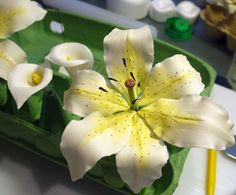 {Splendid Oriental Lily by Delicious Cake Design}