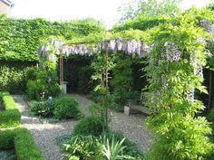 Pergola For Small Backyard Pergola Shade, Pergola Patio, Pergola Ideas, Wisteria Pergola, Steel Pergola, Pergola Kits, Back Gardens, Small Gardens, Outdoor Plants