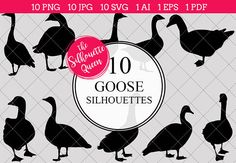 Guinea Fowl Silhouette Clipart Vector includes PNG files with transparent backgrounds at The PNGs are approximately 10 inches at it's widest point. Pine Tree Silhouette, Silhouette Clip Art, Animal Silhouette, Black Silhouette, Silhouette Studio, Shape Templates, Resume Templates, Animal Cutouts, Printable Animals