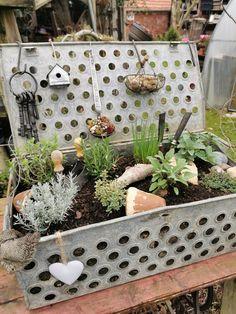 Terrarium, Planters, Patio, Table Decorations, Home Decor, Diy Holz, Inspiration, Decor Ideas, Gardening