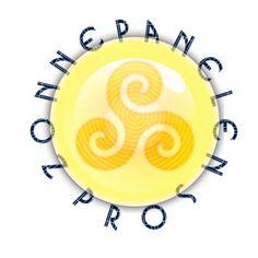 Zonnepanelen Pros Logo Specialisten in Zonne-energie