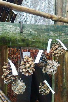 fuglekugler02 Christmas Feeling, Christmas Time, Diy And Crafts, Arts And Crafts, Homemade Bird Feeders, Pretty Birds, Garden Art, Firewood, Activities For Kids