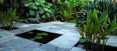Image result for patio tropical garden