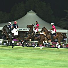 11/8/14 Pink Polo Tournament PHOTO: ad_amol