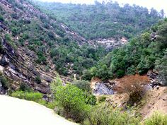 """#Jaén - Santiago-Pontones- Sierras de Cazorla, Segura y las Villas / 38º 0' 21"""" -2º 51' 2"""" / Foto de Julia Soler  El Parque Natural  es el mayor espacio protegido de España y el segundo de Europa. Está declarado Reserva de la Biosfera por la UNESCO desde 1983, Parque Natural desde 1986 y también Zona de Especial Protección para las Aves (ZEPA) desde 1987. Toda su belleza paisajística y riqueza biológica se unen al patrimonio cultural que existe en la zona."""