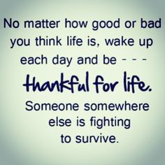 """Let's complain less and THANK more I hope that we all have an amazing day!❤️""""Não importa quão bom ou ruim você acha que sua vida é, acorde a cada dia e seja grato pela sua vida! Em algum lugar alguém está lutando para sobreviver"""" Vamos reclamar menos e agradecer mais?! Desejo a todos um dia maravilhoso.❤️"""