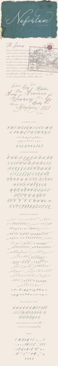 Nufertum by vuuuds https://creativemarket.com/vuuuds/324103-Nufertum