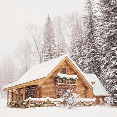 Simplicity is Happiness Log House in the Wilderness for Christmas