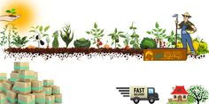 Myrightbuy.com - Largest Online Organic Store Eat healthy, we source it direct from farmers. Go Organic
