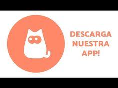 Está es tu app si tienes mascotas y las amas