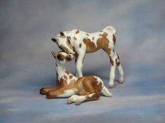 CM Breyer SM foal set x L. Elkjer