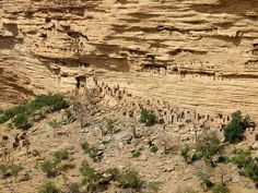 Cliff Dwellings in Dogon Country, Banane, Mali. You can see some of the -Tellem- dwellings WAY up in the cliff face.