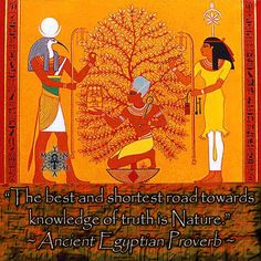 """""""The best and shortest road towards knowledge of truth is Nature."""" ~ Ancient Egyptian Proverb"""