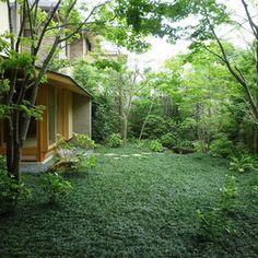 Landscape Gardening How Much Does It Cost Architecture Courtyard, Green Architecture, Front Gardens, Outdoor Gardens, Dream Garden, Home And Garden, Zen House, Small Courtyards, Asian Garden
