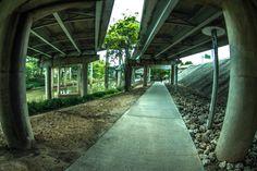 Galeria de 7 cidades que transformaram suas áreas sob rodovias em parques urbanos - 5