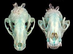 Raccoon Skull  Crystallized Skull  Animal by KristenJarvisART