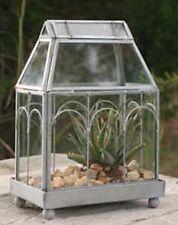 Table Top Glass Metal Wardian Display Case Terrarium Greenhouse~Mni Garden Plant