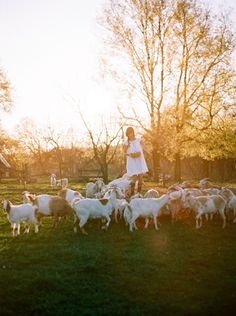 to exchange places with this girl - tec petaja photography Country Life, Country Girls, Country Living, Champs, The Barnyard, Dreamy Photography, Fields Of Gold, Goat Farming, Farm Life