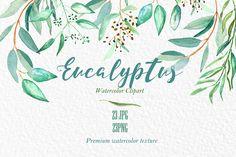 I like eucalyptus...                                                                                                                                                                                 More