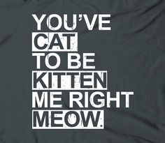 You've cat to be kitten me right meow - humor funny cute text words phrase tshirt t-shirt tee shirt on Etsy, $14.75