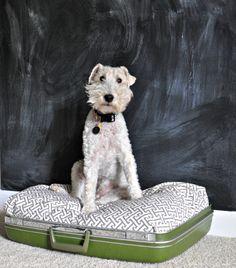 DIY Dog Bed {repurposed suitcase}