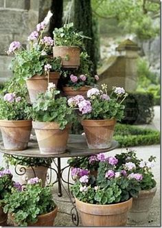 like this layered look of geraniums in old terracotta pots on this stand. like this layered look of geraniums in old terracotta pots on this stand.like this layered look of geraniums in old terracotta pots on this stand. Container Plants, Container Gardening, Potted Geraniums, Potted Herbs, Indoor Gardening Supplies, Terracotta Pots, Beautiful Gardens, Unique Gardens, Garden Inspiration