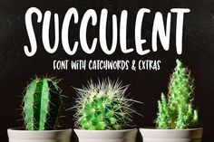 Succulent: a hand-lettered font - Display