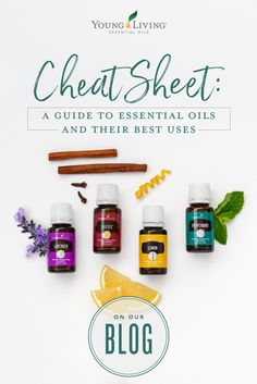 Young Living 491877590551178977 - Can't remember which essential oils do what? We have a cheat sheet for that! Source by youngliving Essential Oils For Skin, Essential Oil Uses, Young Living Essential Oils, Essential Oils For Depression, Thieves Essential Oil, Healing Oils, Living Essentials, Tips & Tricks, Young Living Oils