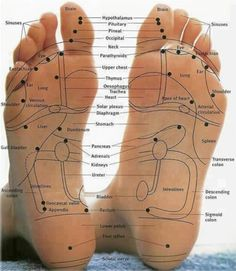 Map of feet