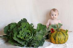 Főzelékek babáknak – mit, hogyan és miért Baby Images, Diabetes, Baby Kids, Cabbage, Vegetables, Food, Meal, Essen, Vegetable Recipes