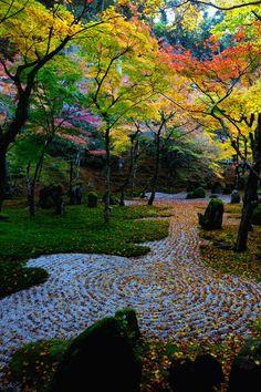 日本庭園、石庭、光明禅寺/Garden of Komyozen-ji temple, Fukuoka, Japan