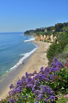 Paradise Cove, Malibu, Los Angeles, California January 2016