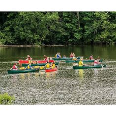This is the time of year when Cowan Lake State Park is great for canoeing & kayaking! Last year they offered free Saturday morning excursions. Got your canoe ready to see if they will have a few spots open this year?  http://clintoncountyohio.com/list/parks/cowan-lake-state-park2  #visitclintoncounty #ohio #kayaking #canoeing #families #kids #MemorialDay #midwest