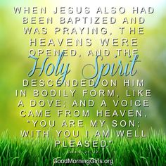 "When Jesus also had been baptized and was praying, the heavens were opened, and the Holy Spirit descended on Him in bodily form, like a dove; and a voice came from heaven, ""You are my son: with you I am well pleased."" Luke 3:21-22"
