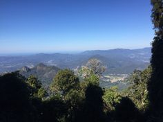 The view from Mount Warning, NSW
