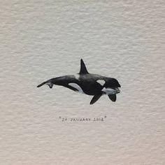 Lorraine Loots- #art #painting #orca #killerwhale #miniature