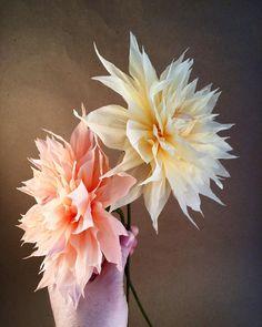 Paper dahlias. #paperflowers