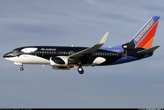 Southwest Airlines N713SW Boeing 737-7H4 aircraft picture