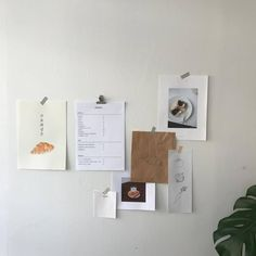 korean home decor aesthetic room decor seoul beige coffee cream milk tea ideas wooden light soft minimalistic 아파트 장식 アパート 装飾 aesthetic home interior apartment japanese kawaii g e o r g i a n a : f u t u r e h o m e Room Wall Decor, Living Room Decor, Bedroom Decor, Aesthetic Room Decor, Beige Aesthetic, My New Room, My Room, Isak & Even, Image Originale