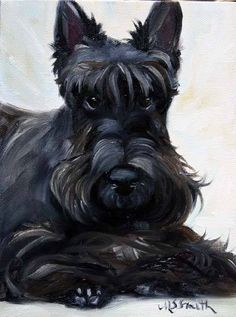 b452809fe Scottish Terriers, Scottie Dogs, Gandalf, Westies, Dog Life, Funny Dogs