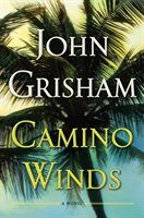 john grisham: 266 Books available | chapters.indigo.ca John Grisham, Beach Reading, Penguin Random House, Plot Twist, Thrillers, Large Prints, Bestselling Author, Nonfiction, Storytelling
