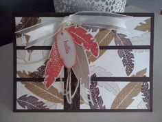 stampin up four feathers   Federn