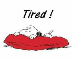 Tired Snoopy More - Humor Memes Snoopy Love, Snoopy And Woodstock, Snoopy Images, Snoopy Pictures, Peanuts Cartoon, Peanuts Snoopy, Snoopy Cartoon, Tired Funny, Snoopy Quotes
