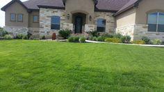 House & lawn.